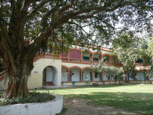Gujarat Vidyapith University